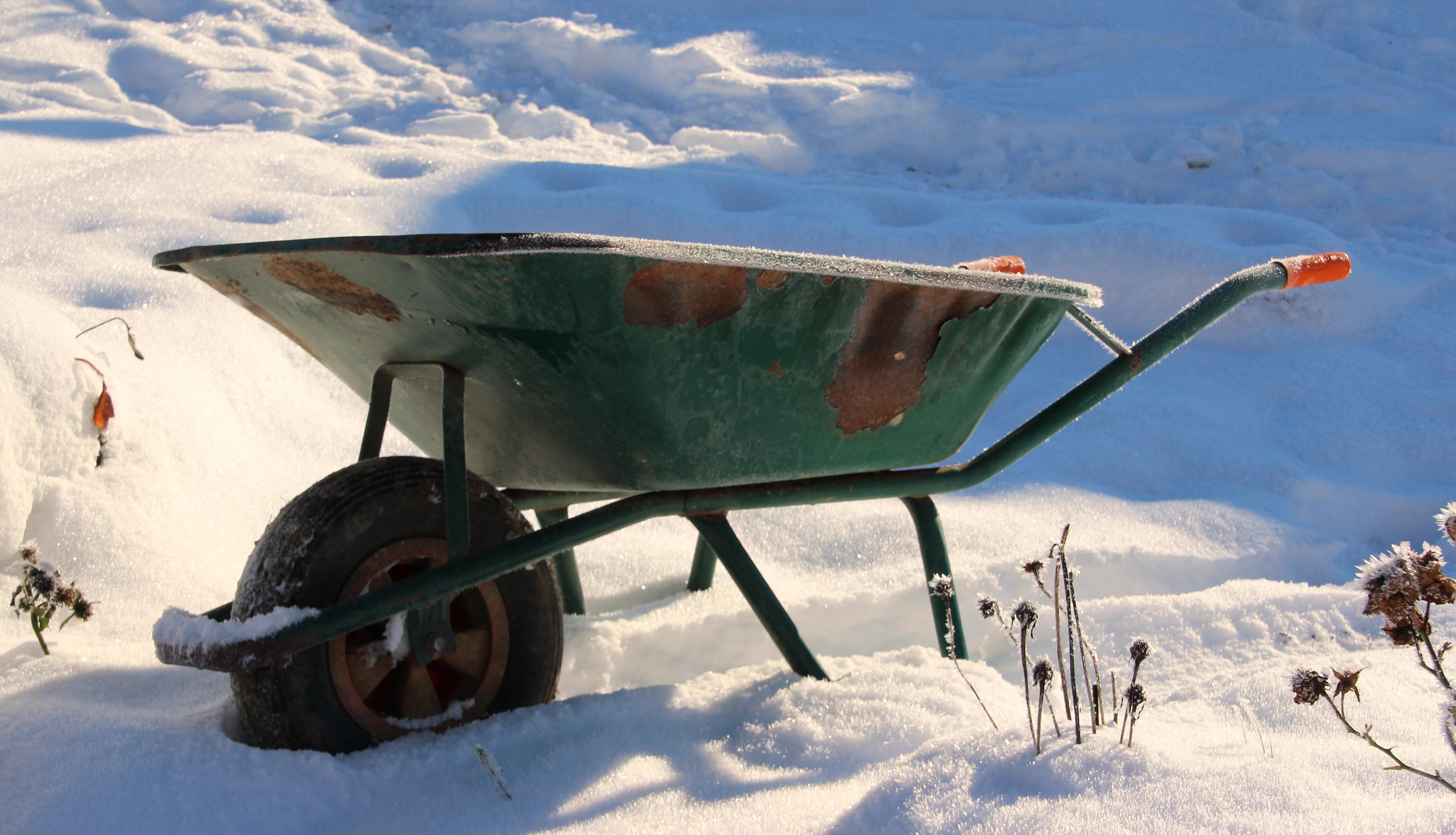 Gartenarbeit im j nner maschinenring blog ober sterreich - Gartenarbeit im januar ...